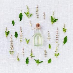 aroma-906137 (1)
