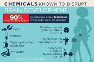 Chemicals_Brain Development